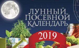 Фазы Луны в марте 2019 года по дням для садоводов и огородников