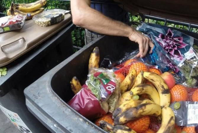 В ООН сообщили, что треть продуктов питания в мире выбрасывают на помойку