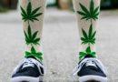 В Татарстане полиция провела спецоперацию с контрольной закупкой носков из-за рисунка конопли на них