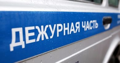 В Петербурге задержали каршеринг с трупом в багажнике — мужчину забили за кражу телефона