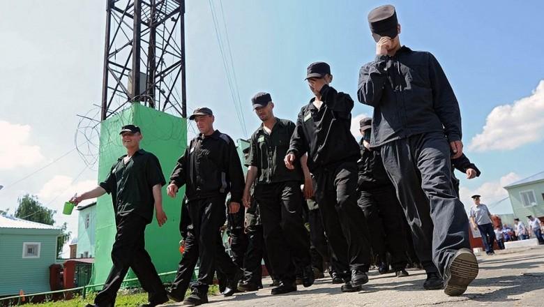 Госдума не планирует проводить амнистию к 75‑летию Победы