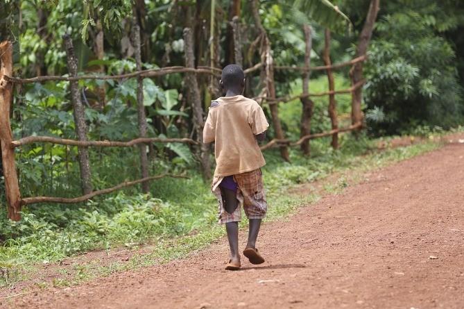 Миру угрожает голод библейского масштаба из-за пандемии – ООН8