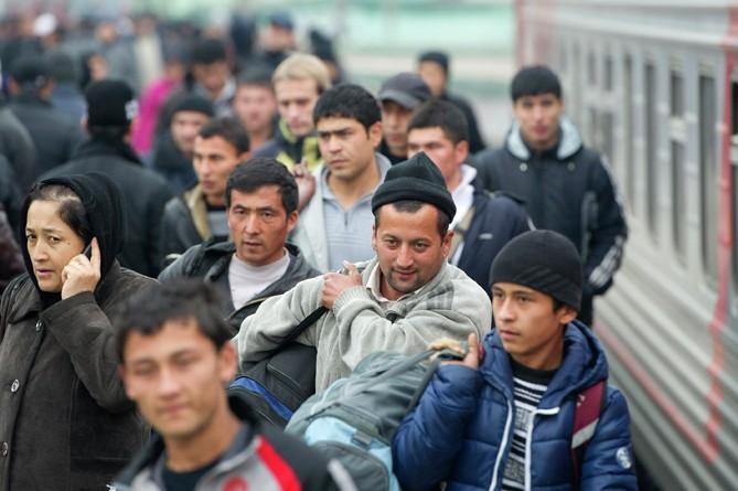 В России предложили приравнять мигрантов к гражданам РФ для получения пособий8