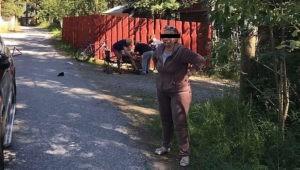 Экс-чиновница из Мурманской области отсудила у семьи ребенка, сбитого ею на авто, ₽120 тыс